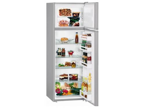 Холодильник Liebherr CTPsl 2921-20, вид 1