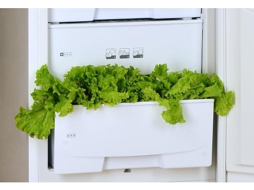 Холодильник Pozis RK-101 серебристый, вид 3