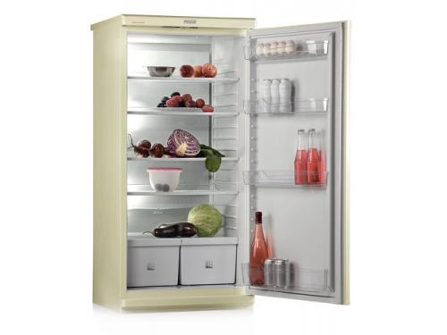 Холодильник Pozis 513-5 Бежевый, вид 2