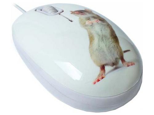 Мышка CBR Capture,  1200 dpi, рисунок, USB + коврик, вид 2