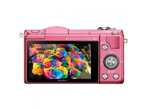 �������� ����������� Sony Alpha A5000 Kit 16-50 �������, ��� 2