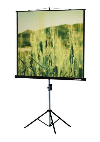 Экран Lumien Master View LMV-100102