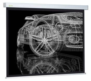 Экран CACTUS Wallscreen 213x213 см CS-PSW-213x213