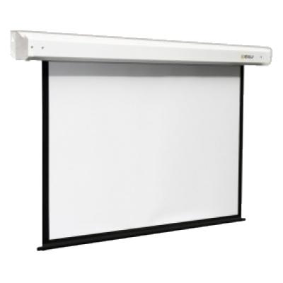 Экран Digis Electra DSEM-1107