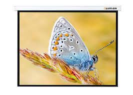 Экран Lumien Master Control LMC-100102 1:1